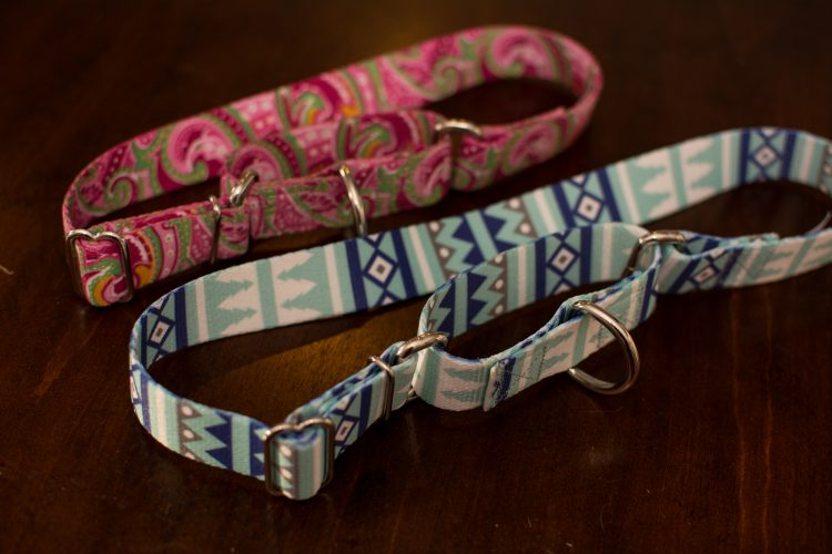 Dog Collar PSA - Be Careful - Our Kind of Wonderful