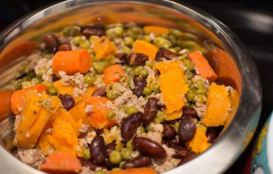 Crock Pot Dog Food - Our Kind of Wonderful